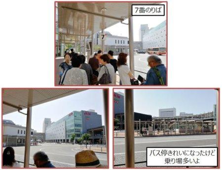 姫路駅前のバス乗り場です。7番のりばから県立博物館にむかいます。