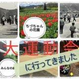 2018/05/20 ちづちゃんの花園 みんなの森 桃原合同 「大運動会」に参加してきました!
