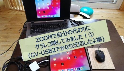 ZOOMで自分の代わりにグラレコ映してみました!①(GV-USB2でかなり迂回したよ編)